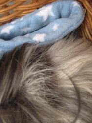 Betsy hair loss 2.JPG