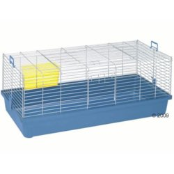 guinea cage old blue.jpg