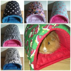 Advice On Skinny Pig Bed The Guinea Pig Forum