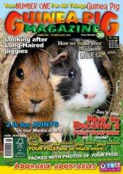 #30 cover.jpg