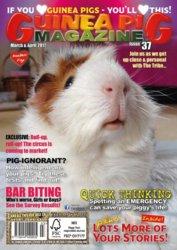 #37 cover.jpg