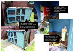Guinea Pig Hutch ideas-01.jpg